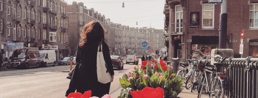 tulpen Amsterdam maart